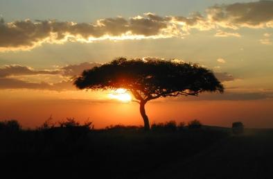 sunset-masai-mara